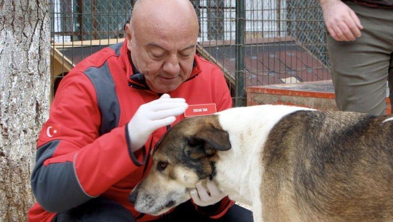 Kızılay'dan engelli hayvanlar için bir kamyon yardım