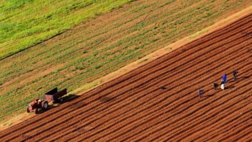 Hazineye ait tarım arazilerinden alınacak kiralar 6 ay ertelendi