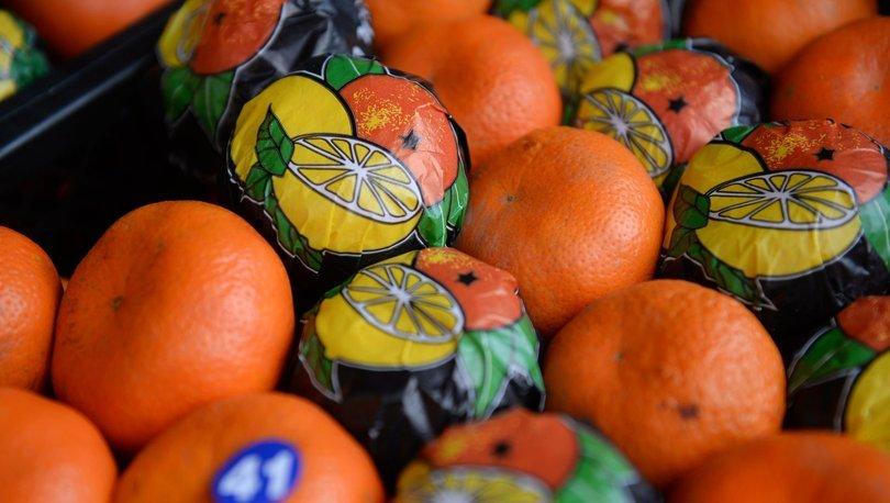 meyve sebze ihracatı