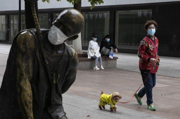 Çin, köpekleri 'dost hayvan' olarak görmeye hazırlanıyor