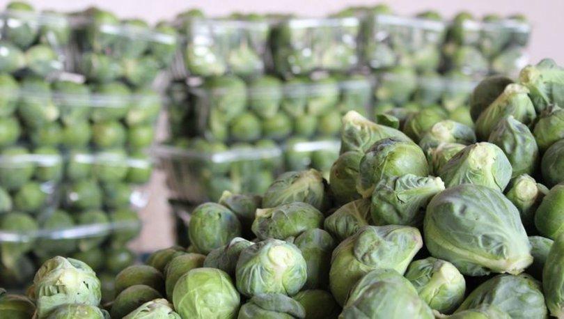 Brüksel lahanası tarifi, yemeği nasıl yapılır?