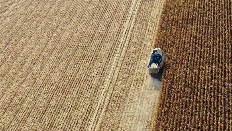 Sözleşmeli tarım
