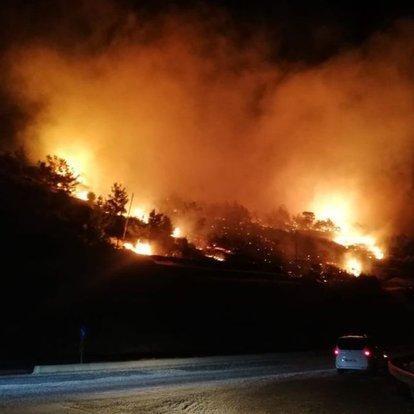 Son dakika: Mersin'de orman yangını! Kontrol altına alındı