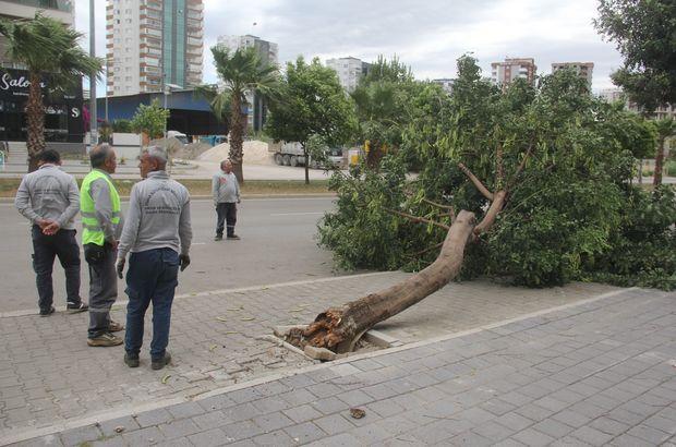 Adana'yı kuvvetli rüzgar vurdu!