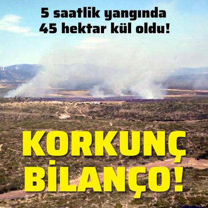 Korkunç bilanço! 5 saatlik yangında 45 hektar kül oldu!