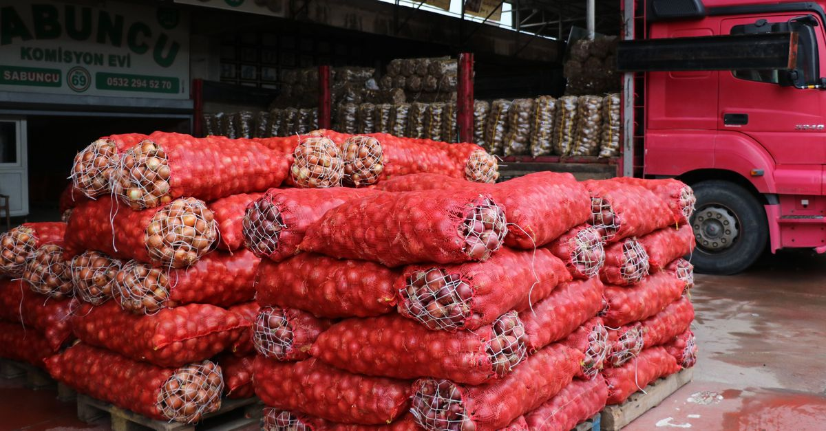 Patates ve soğanın ihracatı kontrollü açılıyor