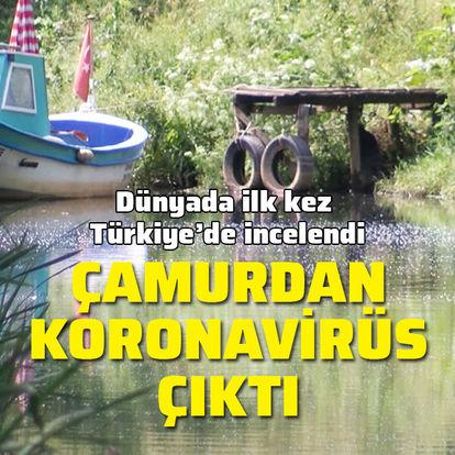 Çamurda koronavirüse rastlandı
