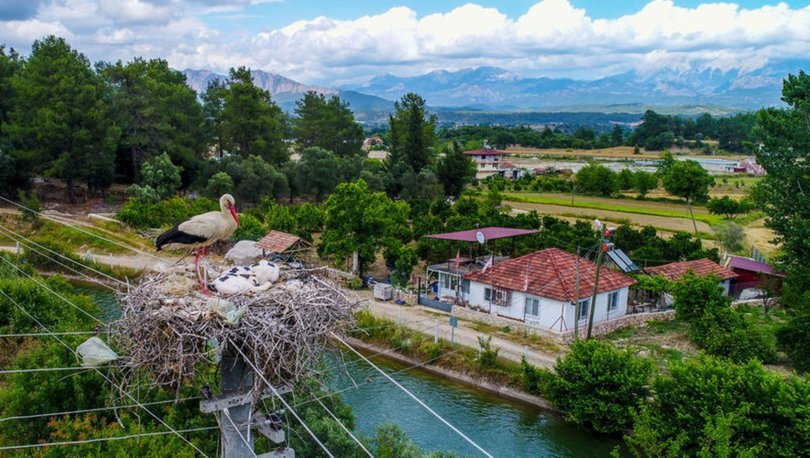 Antalya'nın leylek köyü