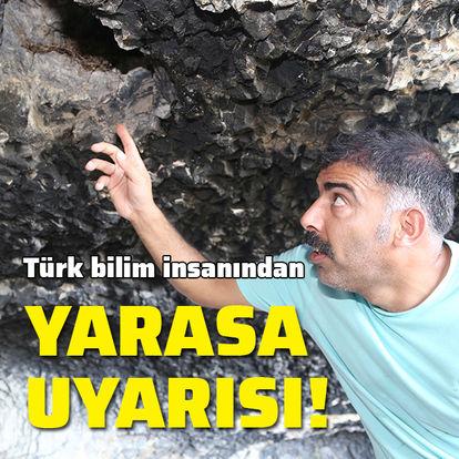 Türk bilim insanından yarasa uyarısı!