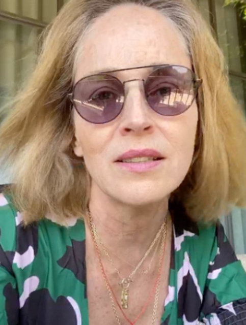 Sharon Stone protestoculara seslendi: İç savaşa ihtiyacımız yok - Magazin haberleri