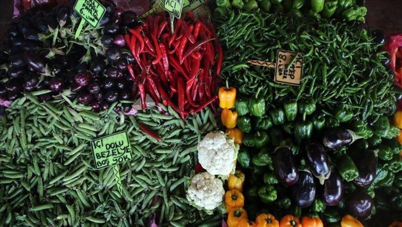 yaş sebze meyve ihracatı