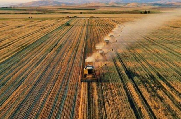 Ücretsiz arazi kimlere, hangi illerde verilecek?