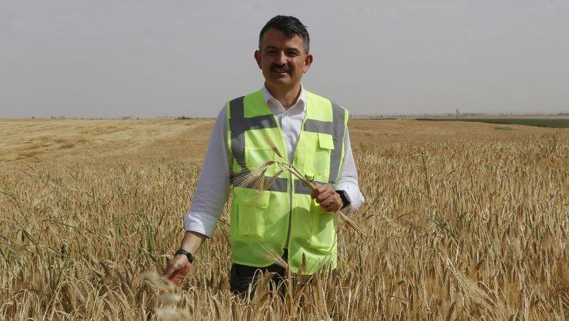 Bakan Pakdemir: 2 milyon hektar, üretime kazandırılabilecek durumda