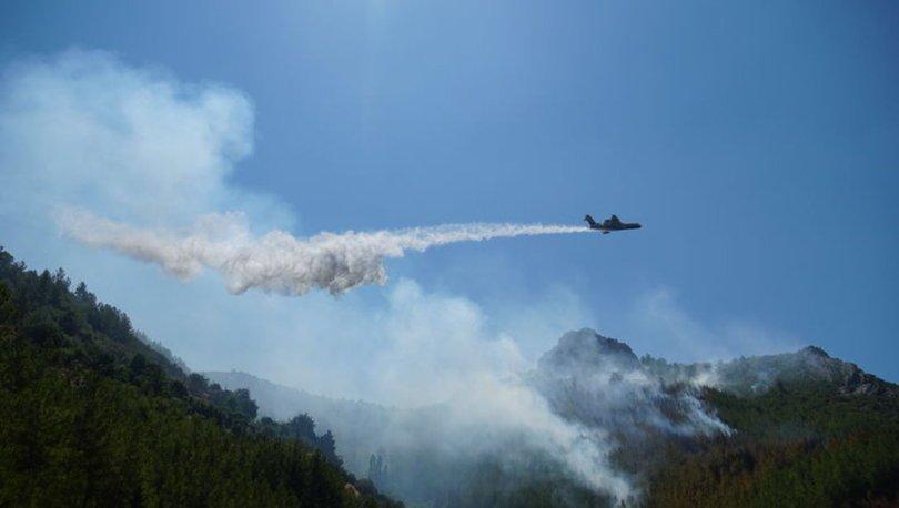 Antalya'da 3 hektarlık orman yandı!