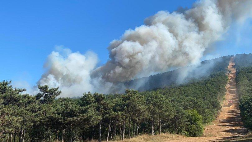 Son dakika haberler... İstanbul'da korkutan orman yangını!