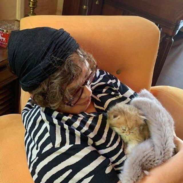 Yıldız Tilbe, Sezen Aksu'ya kedi hediye etti - Magazin haberleri