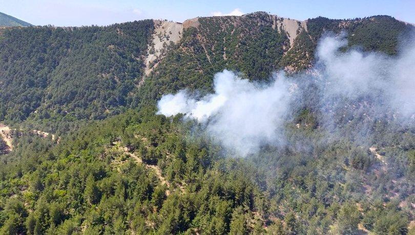 Son dakika haberler... Hatay'da korkutan orman yangını!