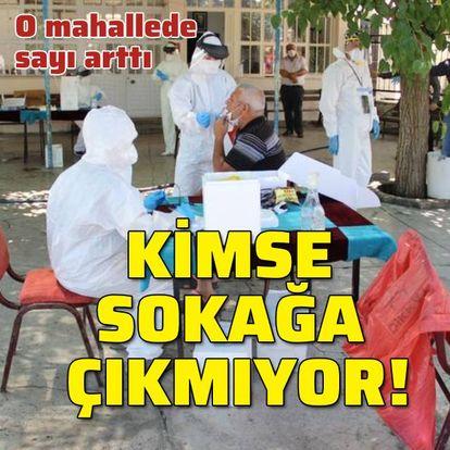izmir'in menemen ilçesi mahallesinde virüslü sayısı arttı