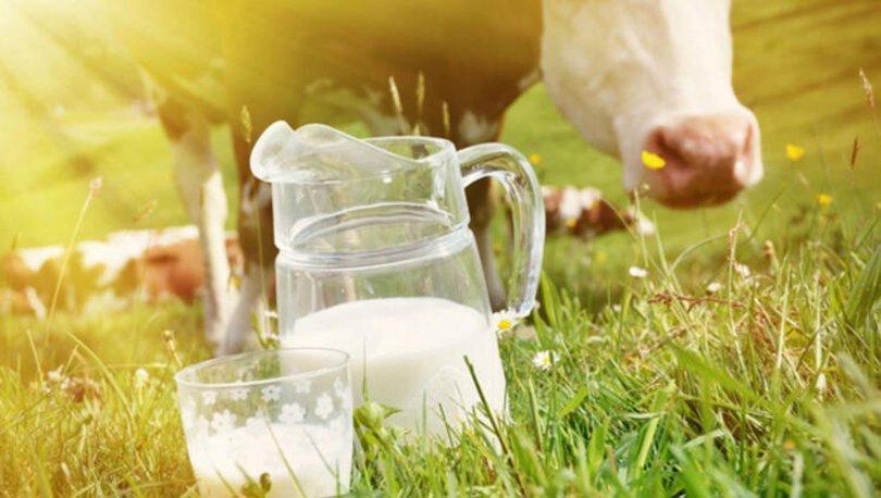 İnek sütü alerjisi