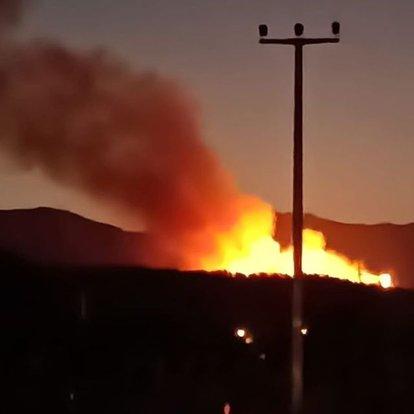 izmir orman yangını