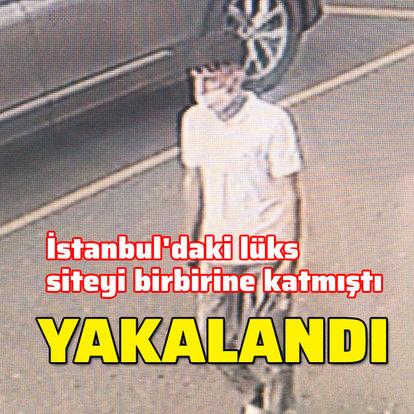 İstanbul'da lüks siteyi birbirine katmıştı! Yakalandı