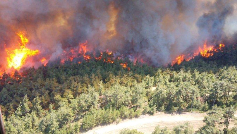 gelibolu yarımadası yangın