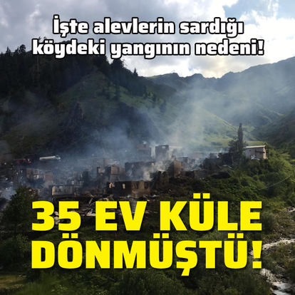 İşte alevlerin sardığı köydeki yangının nedeni!