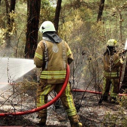 Sarıyer'de orman yangını! Bir kişi gözaltına alındı