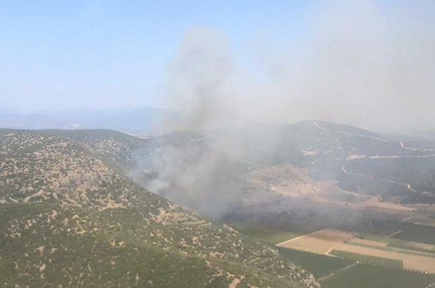 İzmir'de korkutan orman yangını!