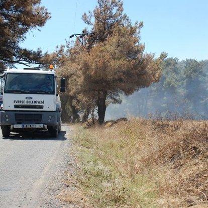 Gelibolu'da yine yangın çıktı