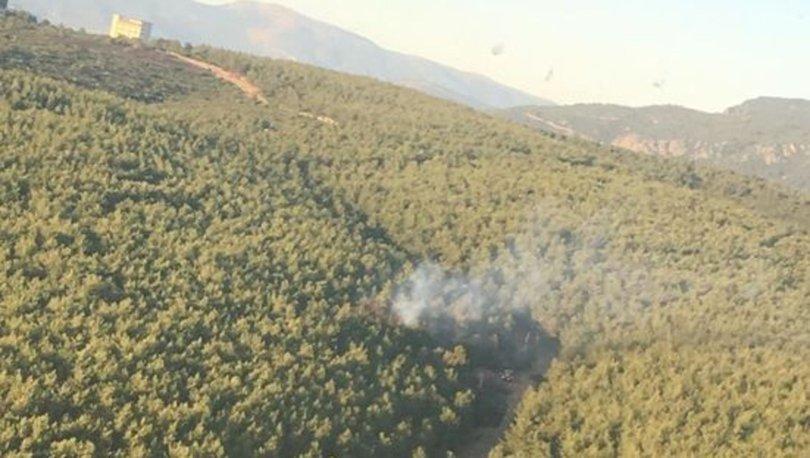 Son dakika! İzmir'de orman yangını çıktı