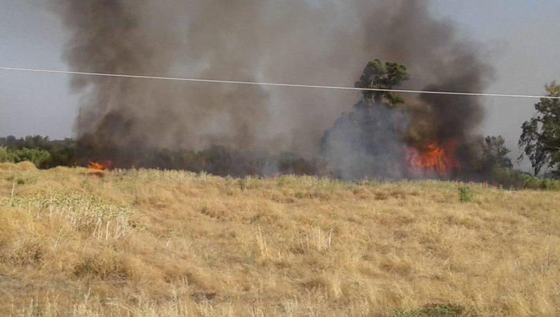 Son dakika haberler... Hatay'da çıkan örtü yangını söndürüldü