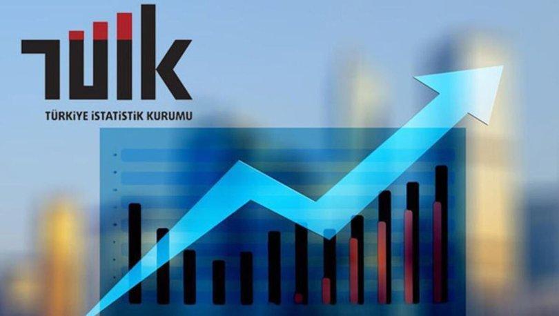 Son dakika! TÜİK'ten flaş turizm istatistikleri açıklaması