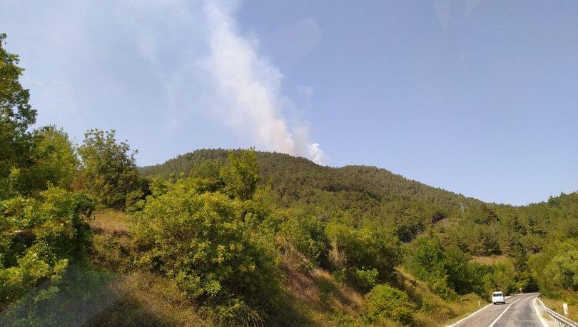 Son dakika haberler... Samsun'da korkutan orman yangını!