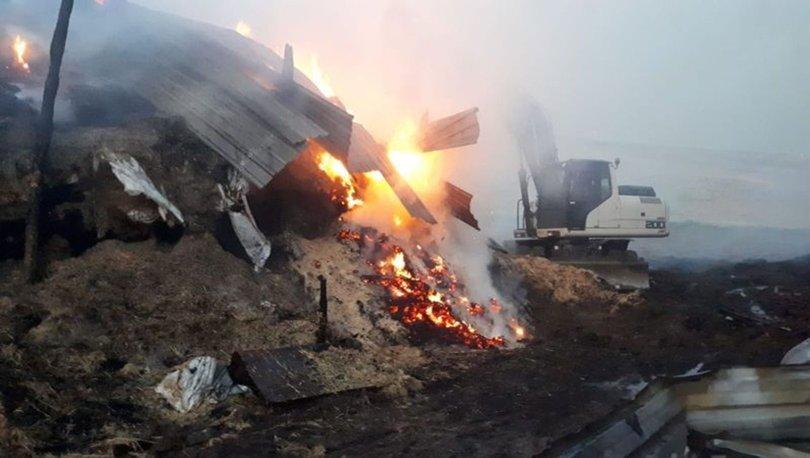 Çorum'da çiftlik yangını! Binlerce saman balyası kül oldu