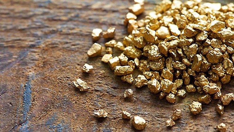 Son dakika! Türkiye yurtdışında da altın arayacak! MTA'dan altın hamle