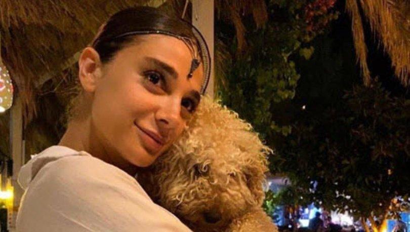 Son dakika haberler... Pınar Gültekin hakkında çirkin paylaşıma suç duyurusu