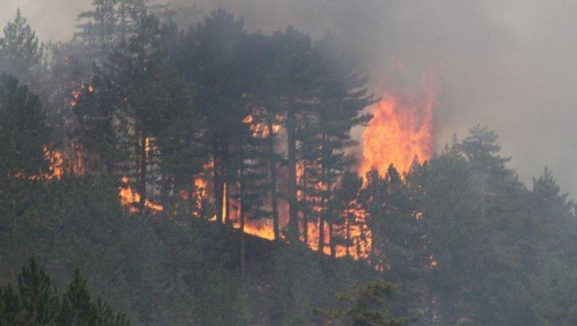 Konya'daki orman yangını kontrol altına alınamıyor