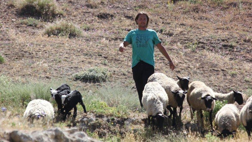 3 dil bilen çoban