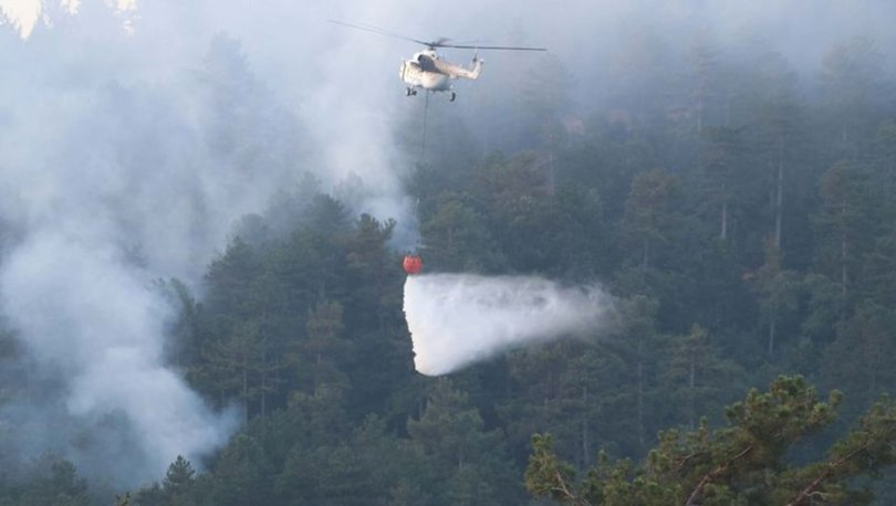 çanakkale orman yangını