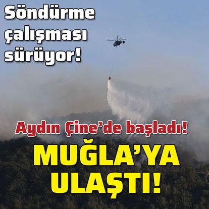 Aydın'da çıkan orman yangını Muğla'ya ulaştı!