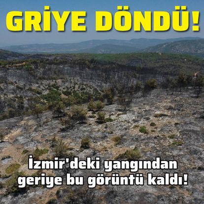 İzmir'deki yangından geriye bu görüntü kaldı!