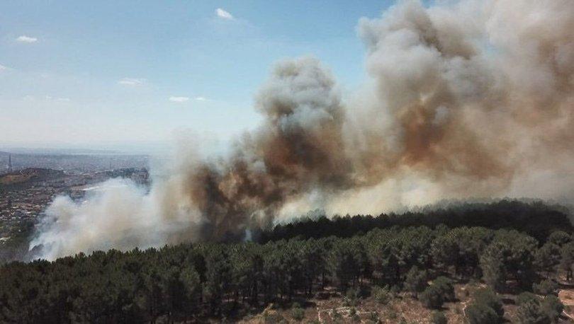 Aydos ormanındaki yangına neden olan kişi serbest bırakıldı