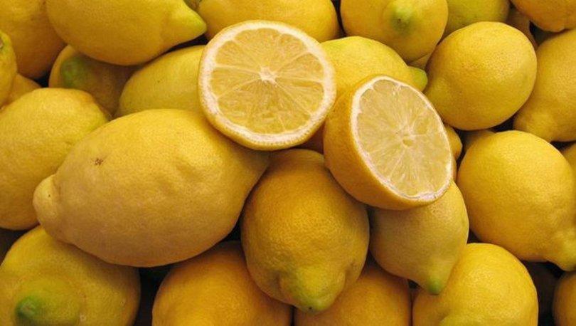 Limon ihracatçısı