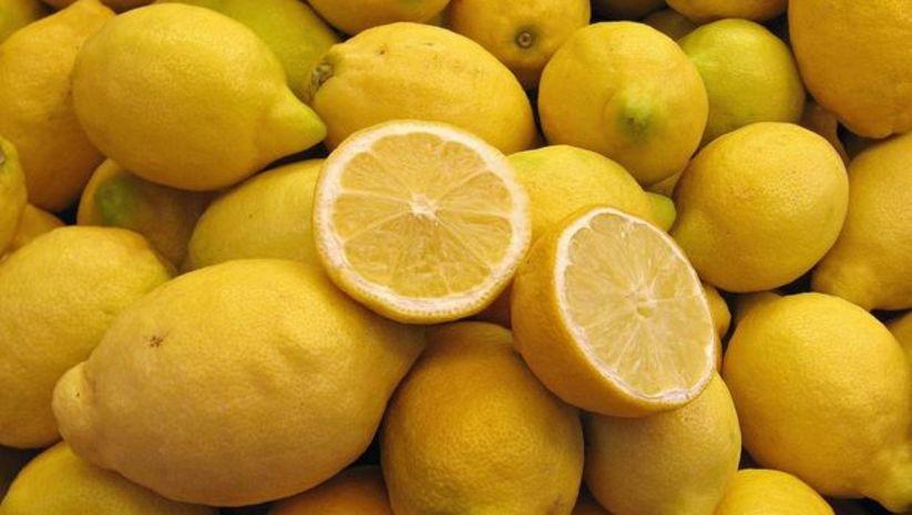 Limon ihracatçısını sevindiren haber!