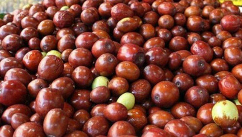 Hünnap meyvesinin faydaları nelerdir?