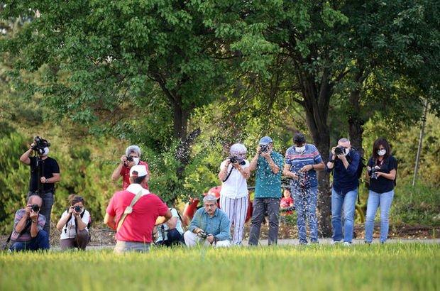 Fotoğrafçılar oraya akın etti