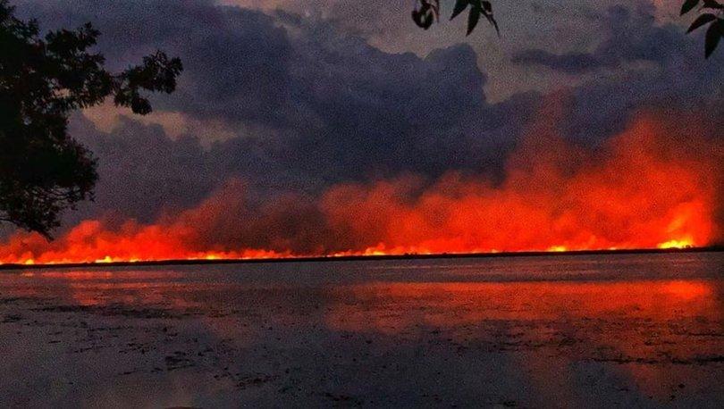 Samsun'da, sazlıkta çıkan yangın ormana sıçradı