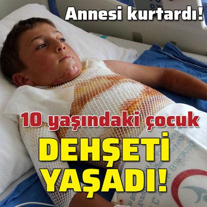 10 yaşındaki çocuk dehşeti yaşadı!