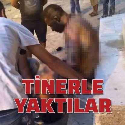 İzmir'de dehşet! Tinerle yaktılar